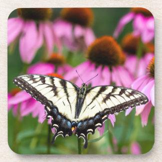 Coneflowersの東のトラのアゲハチョウの蝶 コースター