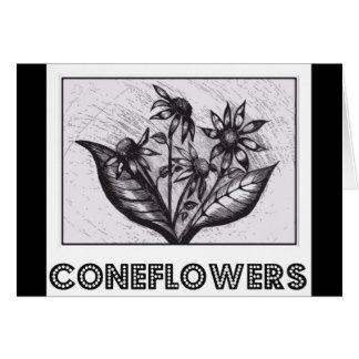 Coneflowers カード