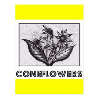 Coneflowers 葉書き