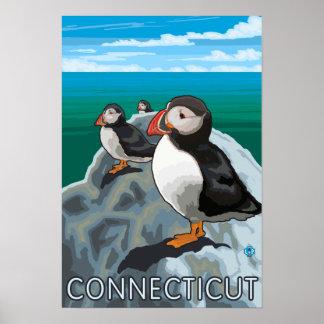 ConnecticutPuffins場面 ポスター