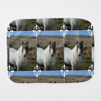 Connemeraの甘い子馬 バープクロス