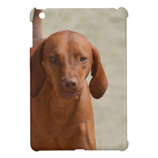 Coonhound iPad Mini カバー