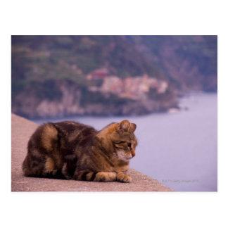 Corniglia、Cinque Terre、イタリア ポストカード