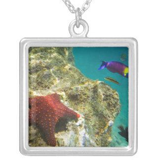 Cortezの虹のベラの男性および女性および海 シルバープレートネックレス