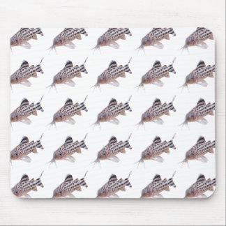 Corydoras robineaeのマウスパッド,No.01 マウスパッド