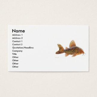 Corydoras Sterbaiのナマズのプロフィールカード 名刺