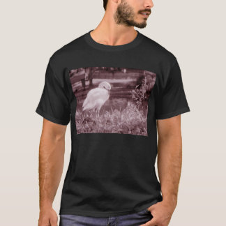 Coscorobaの白鳥 Tシャツ