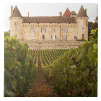 Coteの古い中世Chateau de Rully タイル