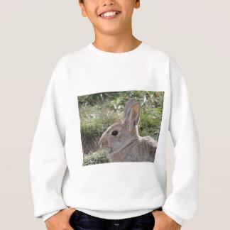 Cottontailウサギ スウェットシャツ