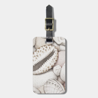Cowrie及びアワビの貝及び小石の荷物のラベル ラゲッジタグ