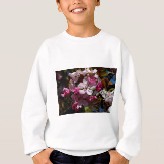 Crabappleのピンクの花盛りの開花 スウェットシャツ