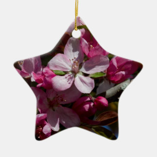 Crabappleのピンクの花盛りの開花 セラミックオーナメント