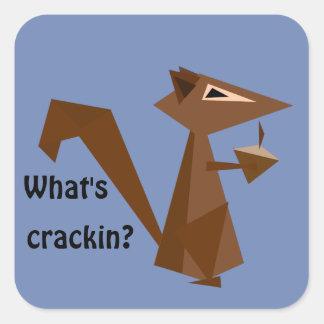 Crackinはである何ブラウンのリスか。 スクエアシール