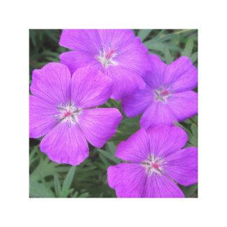 Cranesbillのゼラニウムの紫色 キャンバスプリント