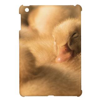 CrawfordBethanyの友情 iPad Miniケース