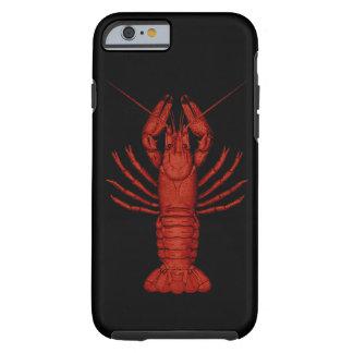 Crayfish ケース