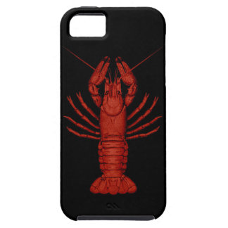 Crayfish iPhone SE/5/5s ケース
