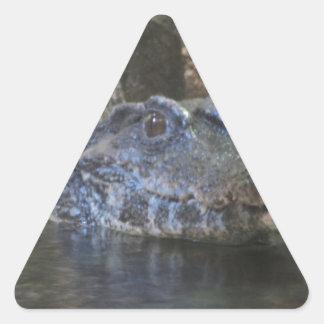 Croc 三角形シール