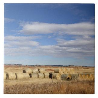 Crook郡の干し草ベール タイル