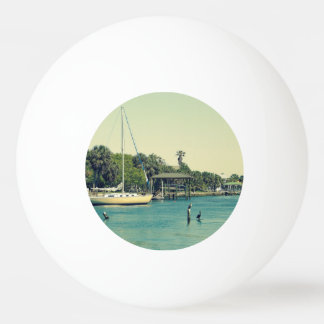 Crystal川の生命 卓球ボール