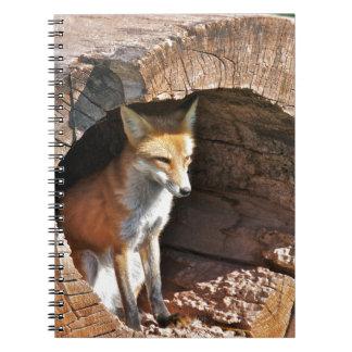 Cubbyの穴 ノートブック