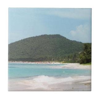 Culebraのフラメンコのビーチプエルトリコ タイル