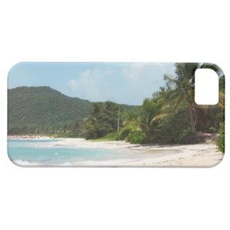 Culebraのフラメンコのビーチプエルトリコ iPhone SE/5/5s ケース
