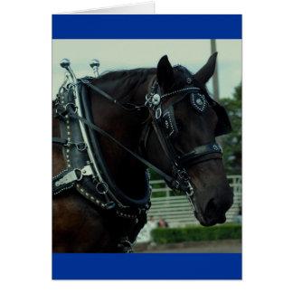 Culpeper VAのばん馬ショー カード