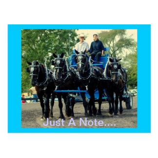 culpeper VAのばん馬ショー ポストカード