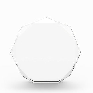 Custom Octagon Award 表彰盾