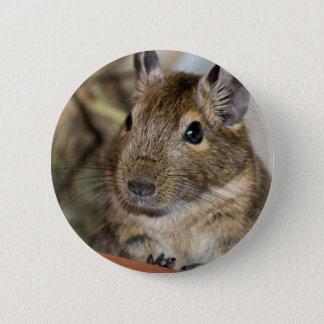 Cute Alert Degu Photograph 5.7cm 丸型バッジ