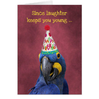 Cute Macaw Keep Laughing  Birthday カード