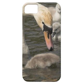 CygnetsのiPhone 5の穹窖を持つ白鳥 iPhone SE/5/5s ケース