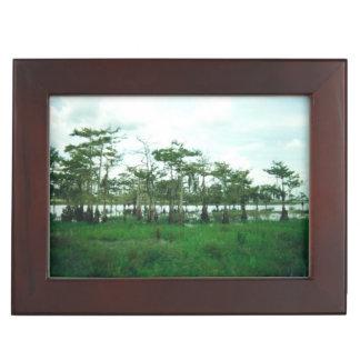 Cypressの歩哨 ジュエリーボックス