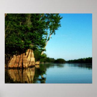 Cypress River Morning Poster ポスター