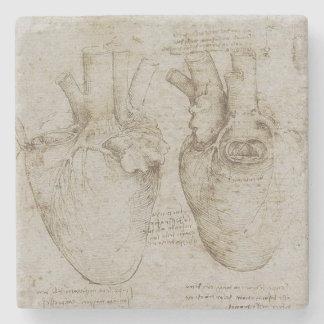 Da Vinciの人間のハートの解剖学 ストーンコースター