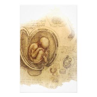 Da Vinci -胚のスケッチ 便箋