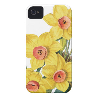 Daffodills Redouteのイラストレーション Case-Mate iPhone 4 ケース