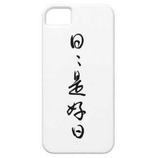 Daily-life-is-the-best-treasure, a-pair- of –kanji iPhone 5 case