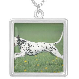 Dalmatianランニング シルバープレートネックレス