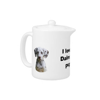 Dalmatian小犬の写真
