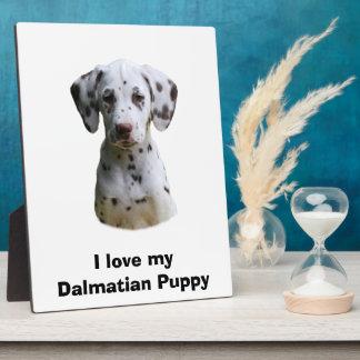 Dalmatian小犬の写真 フォトプラーク