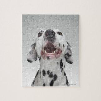 Dalmatian犬の閉めて下さい ジグソーパズル