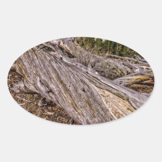 Dana草原の眺め 楕円形シール