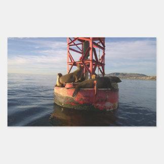 Dana Pointのブイでリラックスしているアシカ 長方形シール