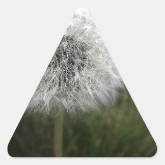 Dandie 三角形シール