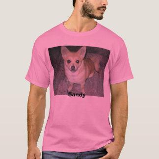 Danielleのお気に入りのな最近の写真015、サンディ Tシャツ