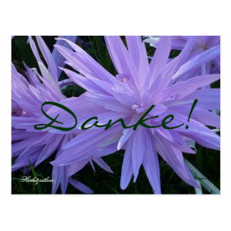 Danke! (Herbstzeitlose) - Postkarte ポストカード
