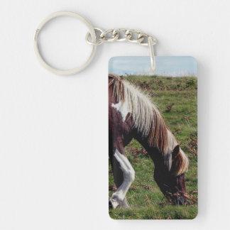 Dartmoorの丘の子馬Grazeing キーホルダー