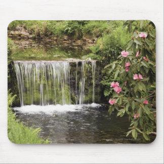 Dartmoorの国立公園の流れそして滝 マウスパッド